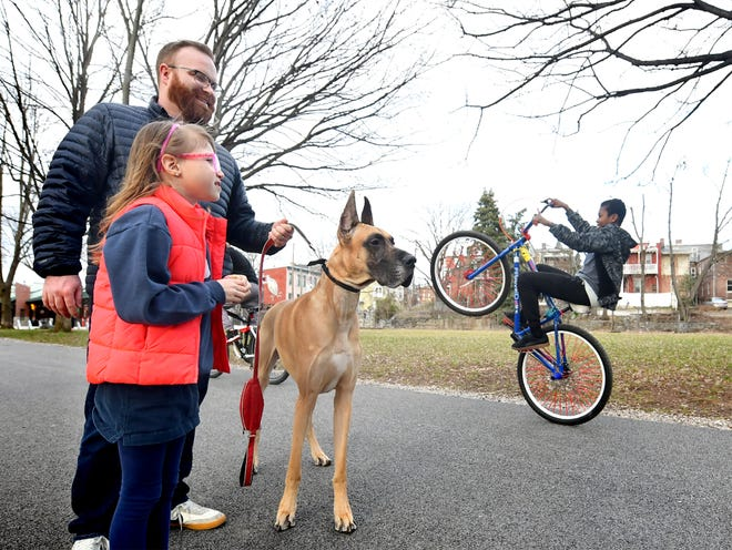 "Philip Given, his daughter Holden, 7, and the family's Great Dane, Brutus, visit Wednesday, March 4, 2020, an area that the family hopes will become ""Pal's Park,"" a leash-free dog area along the York County Heritage Rail Trail in York City. Bill Kalina photo"