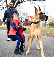 """Philip Given, his daughter Holden, 7, and the family's Great Dane, Brutus, visit Wednesday, March 4, 2020, an area that the family hopes will become """"Pal's Park,"""" a leash-free dog area along the York County Heritage Rail Trail in York City. Bill Kalina photo"""