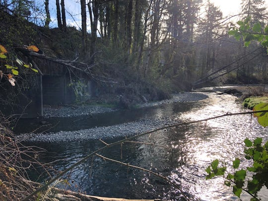 A recent photo of Chico Creek, prior to construction of the new culvert at Golf Club Road. About 500 gallons of sewage went into the creek Thursday, the health district reported.