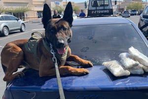 Goodyear officials say police K-9 Diko helped find more than $20,000 worth of methamphetamine during a traffic stop on March 5, 2020.