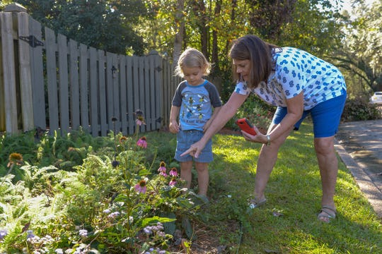 Diverse native plantings support biodiversity and create wonder.