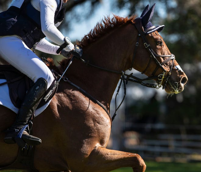 Riders compete in the cross country event at the Red Hills International Horse Trials Saturday, March 9, 2020.