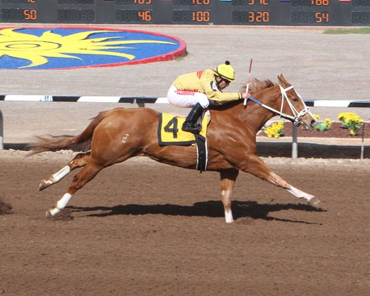 Aggressive Driver won the West Texas Derby on Saturday at Sunland Park Racetrack & Casino.