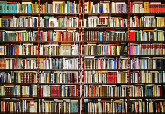 Whole big wall covered with lot of books.