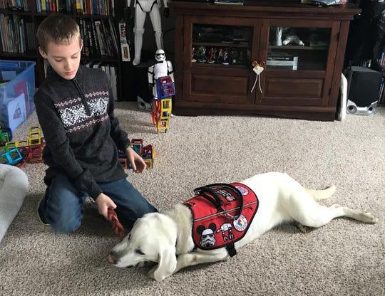 Benjamin Atherton, 10, has already begun bonding with Mack, a year-old white labrador trained through SDWR's Autism Service Dog program.
