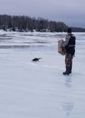 A warden with the Wisconsin Department of Natural Resources readies to remove a soup can from a skunk's head on White Potato Lake in Oconto County Monday, March 9, 2020.