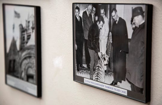 A photo of District Court Judge William R. Eads, meeting a seven-month-old tiger from March 10, 1969 is shown hanging, Monday, March 9, 2020, at the Johnson County Courthouse in Iowa City, Iowa.