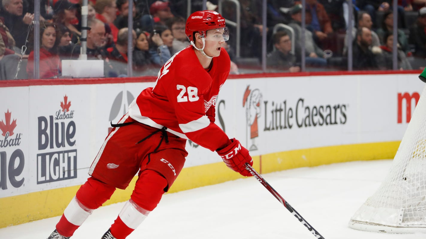 Detroit Red Wings 2017 draft review: 11 picks, but only 2 projected for rebuild