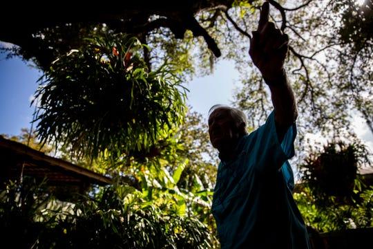 Horticulturist Jan Abernathie, 90, talks about the staghorn ferns at Everglades Wonder Gardens in Bonita Springs on Wednesday, March 11, 2020.