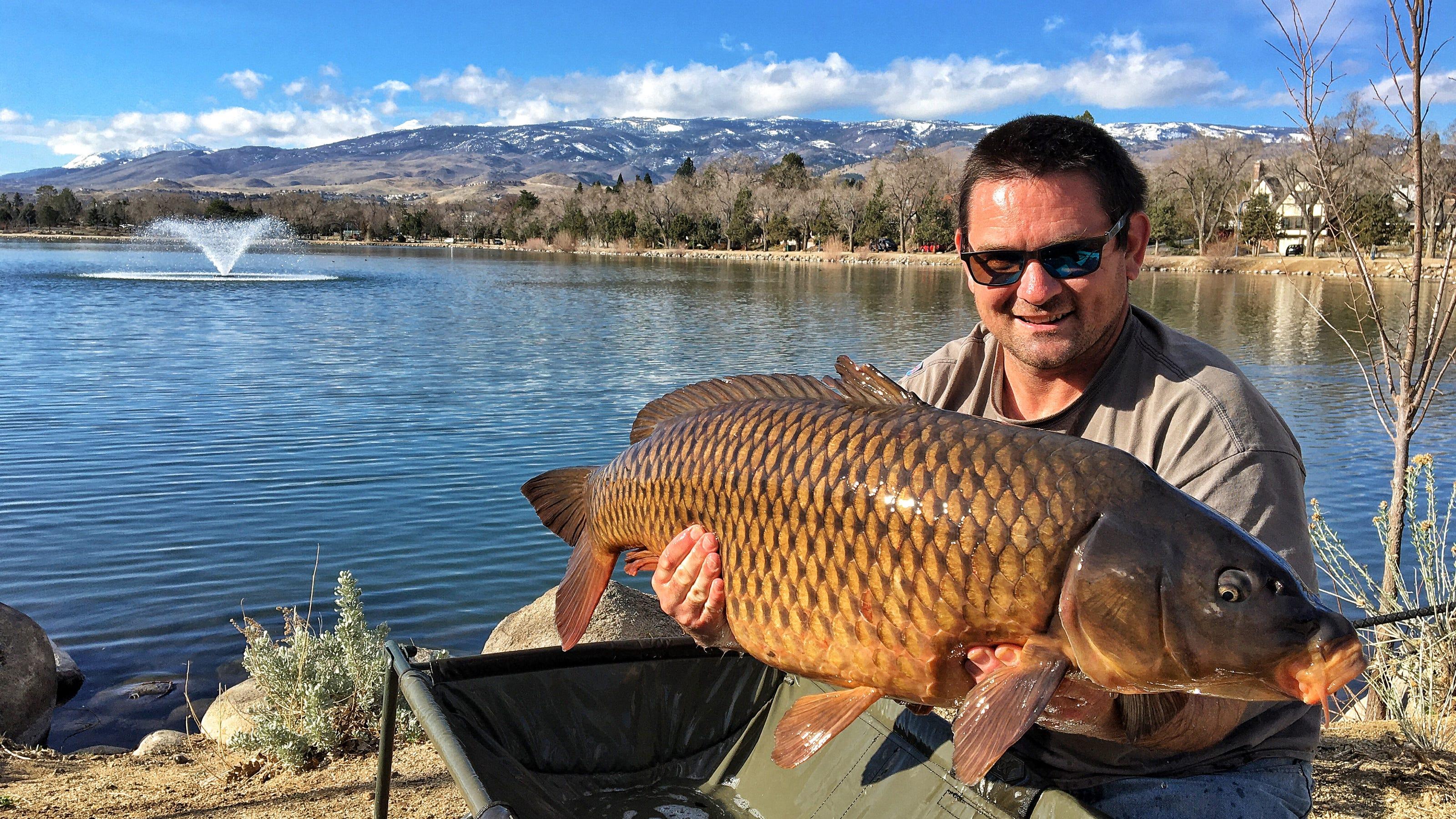 Angler Lands Record Carp From Virginia Lake In Reno