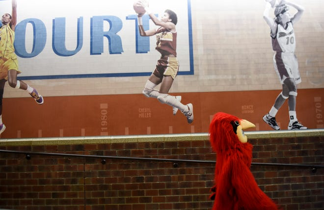 The Vermillion mascot, a tanager, walks back to the game against Dell Rapids after half-time on Tuesday, March 10, 2020 at the Sanford Pentagon.