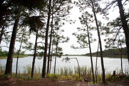 Most county and city parks and preserves across the Treasure Coast remained open, including the George LeStrange Preserve in St. Lucie County.
