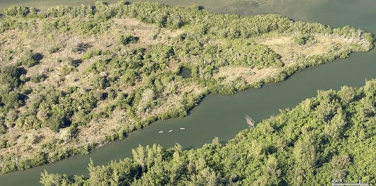 Indian River County is planning engineering work for a multi-faceted project to enhance the Lost Tree Islands Conservation Area.
