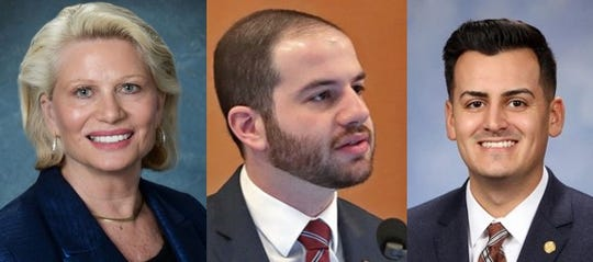 State Sen. Ruth Johnson, R-Holly, State Sen. Jeremy Moss, D-Southfield, and State Rep. Darrin Camilleri, D-Brownstown, are pictured from left to right. All three lawmakers are working on legislation related to the coronavirus.