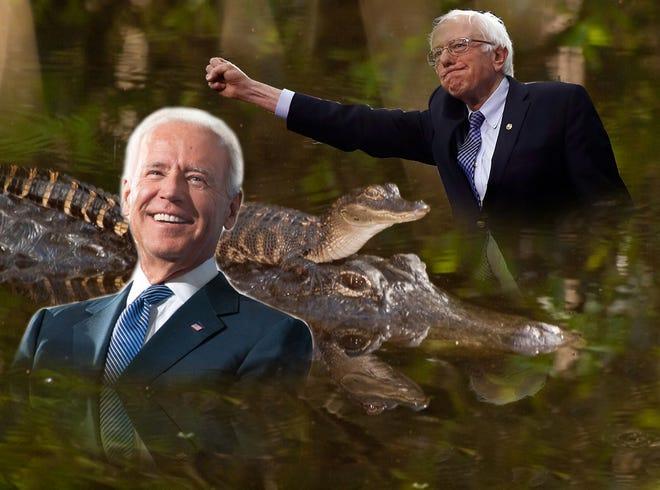 Biden and Bernie do Florida!
