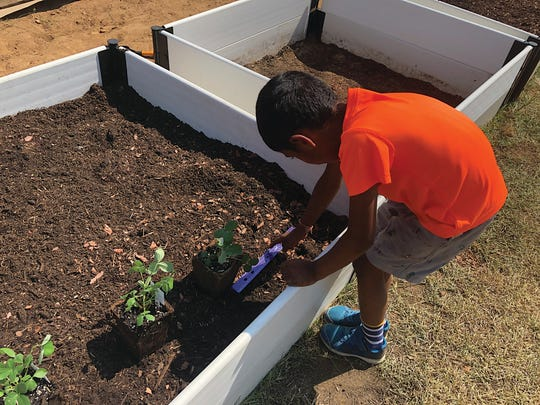 Hamsavardhan Thanasekar, a second grade student at Conley Elementary School, measures to make sure plants are placed at the proper distance in the new school gardens.
