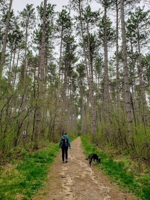 The Scuppernong Trails in the Kettle Moraine State Forest-Southern Unit are great for hiking any time of year.