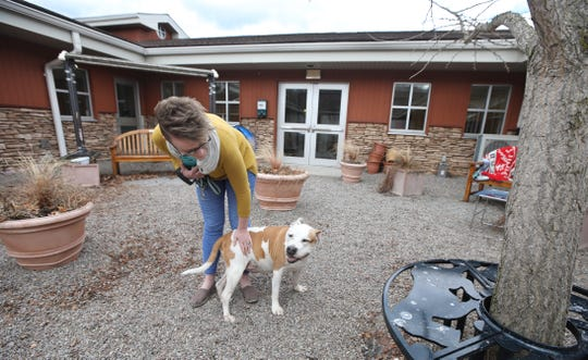 Paige Engard, a staffer at Lollypop Farm, visits with Maynard, a 10-year-old mix, as she takes him out for a walk at the animal shelter Thursday, March 12, 2020 in Fairport.  Lollypop is waving animal adoption fees in an effort to empty the shelter, due to the coronavirus pandemic.