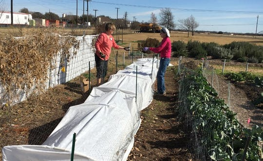 A well-supported row cover can help protect your young vegetable plants while waiting for the last frost of the year.