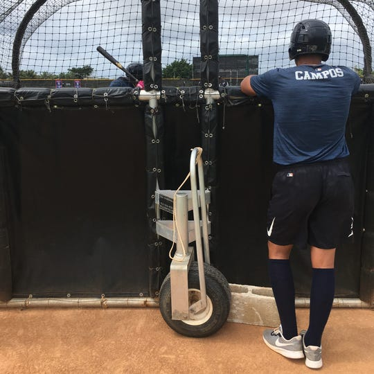 Tigers prospect Roberto Campos watches a teammate during batting practice.