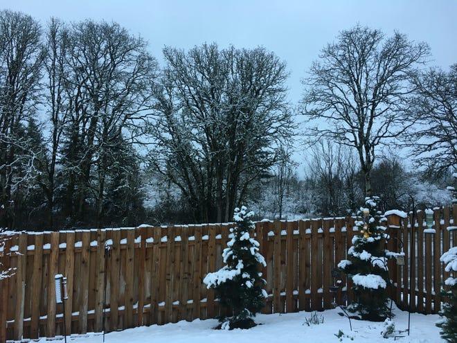 Wet snow blankets the backyard in Salem.