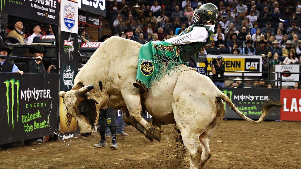 Coronavirus: Professional Bull Riders event filling sports void on TV