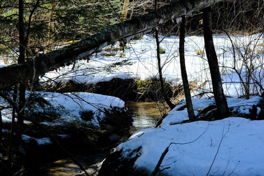 A bit of winter remains along the banks of a creek running through  in the woods near the UVM Adventure Ropes course in South Burlington on Sunday, March 15, 2020.