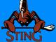 Arizona Sting. National Lacrosse League (2004-07).