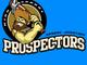 Apache Junction High School Prospectors.