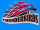 Mesa Community College Thunderbirds.
