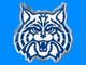 University of Arizona Wildcats.