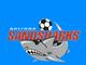 Arizona Sandsharks. Continental Indoor Soccer League (1992-97).