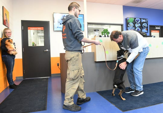 Manager Cecelia Perry, far left, holds desk dog, Olivia, while owner Tom Fischer of Dearborn, right, greets his dog, Bark, being led out by Kyle Watson at Canine to Five on Cass Avenue in Detroit on March 16, 2020.
