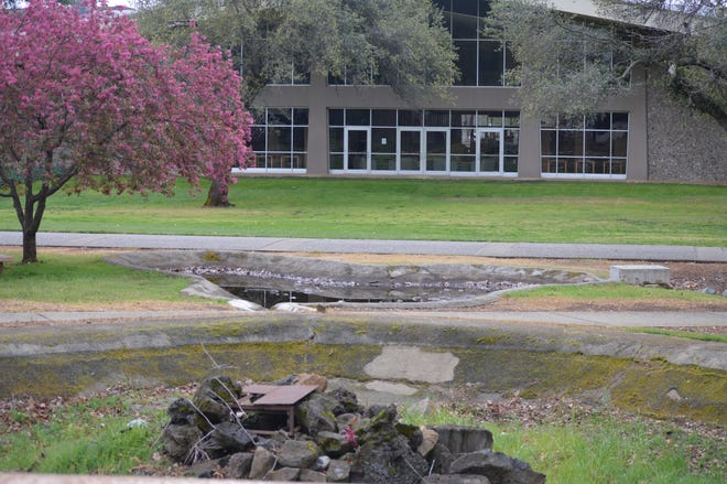 Shasta College's walkway and lawn near the life science building is empty after the school decided to shut down in person classes and transition to online courses on March 16, 2020.