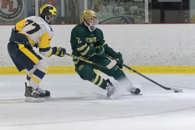 Howell's Dominic Rossi (2) and Hartland's Shane Paxton (77) were set to play with their teammates in the state hockey semifinals before the MHSAA suspended tournament play.