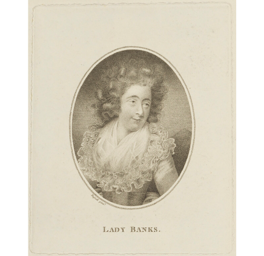 Lady Dorothea Banks was the little-known wife of famous British horticultural explorer Sir Joseph Banks.