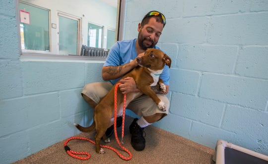 """Miguel Medina, facilities manager at the new Cape Coral Animal Shelter, spends time with """"Uno"""", the first dog that was brought to the new facility along with two other siblings. The shelter is expected to have its grand opening Thursday, March 19, 2020."""