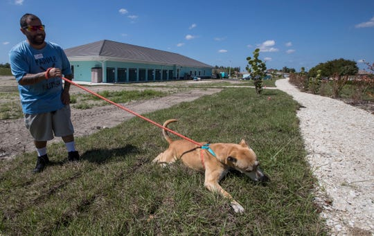 """Miguel Medina, facilities manager at the new Cape Coral Animal Shelter, walks """"Uno"""", the first dog that was brought to the new facility along with two other siblings. The shelter is expected to have its grand opening Thursday, March 19, 2020."""