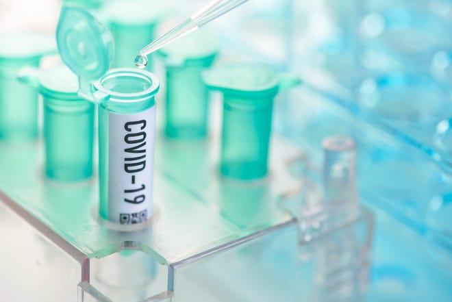 Corona virus: vial with pipette in laboratory