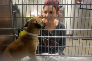 Amy Dixon talks to a 1-year old neutered dog on March 18, 2020, at the Maricopa County Animal Care and Control shelter in Phoenix.