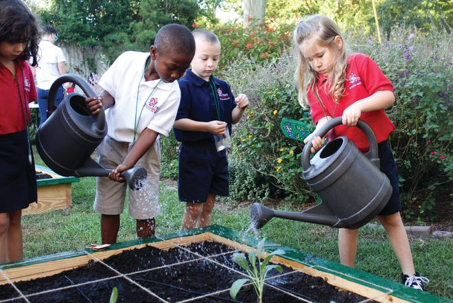 Kindergartners in Mr. Thomas's class water the garden at the Tallahassee School of Math and Science. They include Lilly Shank, Legend Peterson, Hardeson Pegues, and Morgan Fliger-Deese.