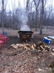 Cooking maple syrup.