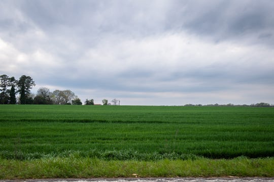 Countryside in Kershaw County, Wednesday, March 18, 2020. The county currently has the highest number of cases of coronavirus in South Carolina.