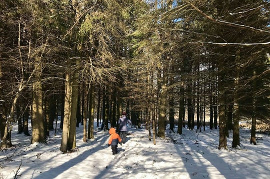 Kids trudge through the forest at Woodland Dunes in Two Rivers.