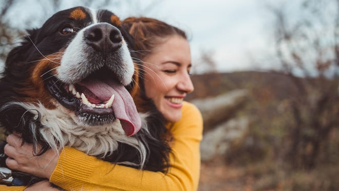 How to keep your pets safe and happy during the coronavirus pandemic