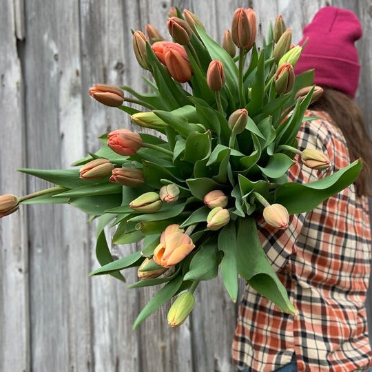 Emily Copus with a spray of tulips from Carolina Flowers.