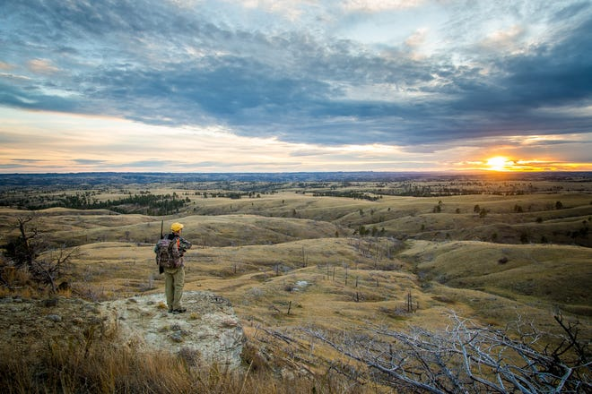 A hunter looks west across the Crooked Creek section of the Missouri River Breaks in central Montana. Conservation groups are concerned that lands such as these, administrated by the Bureau of Land Management, may soon open to oil and gas leasing
