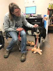 Fairfield County Dog Adoption Center & Shelter manager Erin Frost comforts a dog the shelter recently took in.