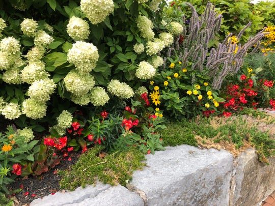 Consider converting some spaces used for ornamental flowers into vegetables — if space is an issue.