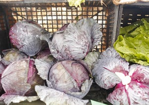 Cabbages for sale at the Downtown Phoenix Farmer's Market in Phoenix, Ariz. on Saturday, March 21, 2020.